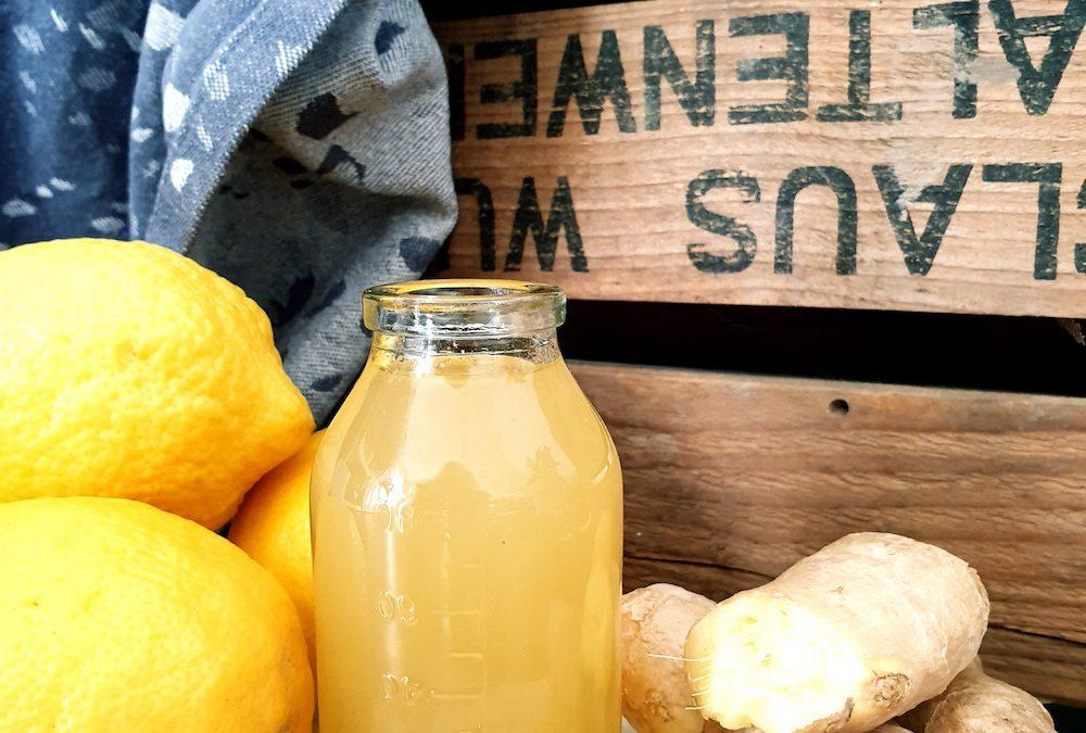 Ingwer Shot mit Zitrone & Honig